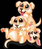 Puppy pile single
