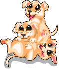 Puppy pile static