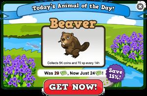Beaver of the day modal