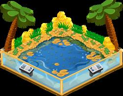 Money pond