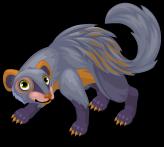 Grey mongoose single