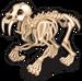 Sabertooth tiger skeleton single