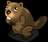 Beaver single