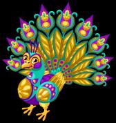 Sari peacock single