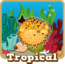 Store tropical