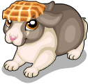 Waffle head bunny static