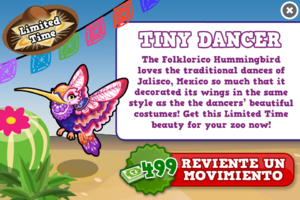 Folklorico hummingbird modal