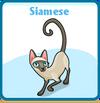 Siamese card