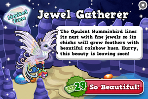 Opulent hummingbird modal