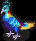Monal pheasant single