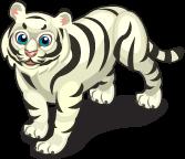 White Bengal Tiger single