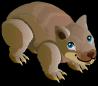 Wombat single