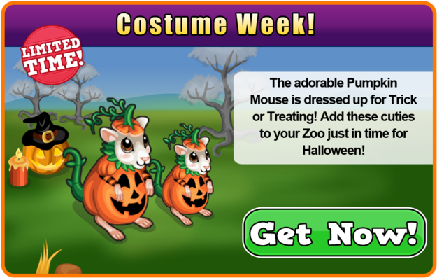Pumpkin mouse modal