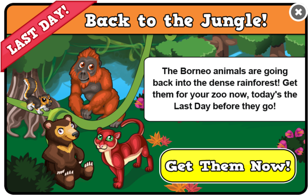 Borneo last modal