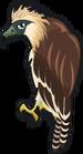 Monkey eating eagle single