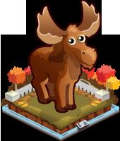 Autumn moose single