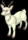 Albino deer static