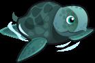 Sea Turtle single
