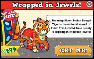 Indian tiger modal
