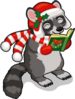 Caroling raccoon single