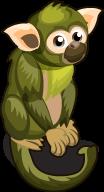 Squirrel Monkey single
