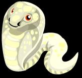 Albino Cobra single