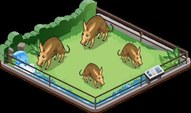 Aardvark family