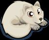 Arctic Fox single