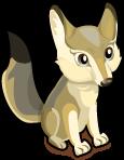 Kit Fox single