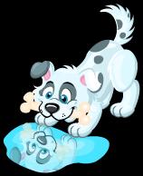 Reflection dog single