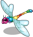 Rainbow dragonfly static