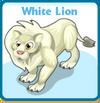White lion card