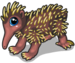 New guinea echidna single