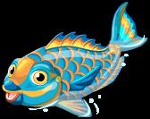 Parrot fish single