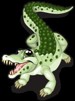 Dwarf crocodile single