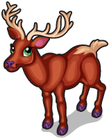 Irish red deer single
