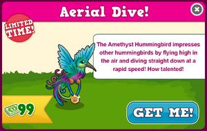 Amethyst hummingbird modal