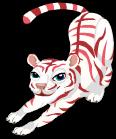 Peppermint tiger an