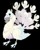 Bright albino peacock static