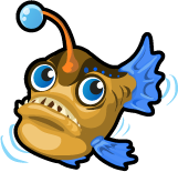 Angler fish single