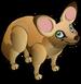 Bat-eared Fox single