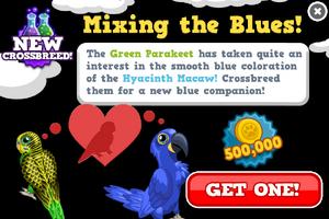 Blue parakeet modal