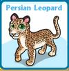 Persian leopard card