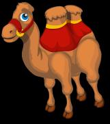 Circus Camel single