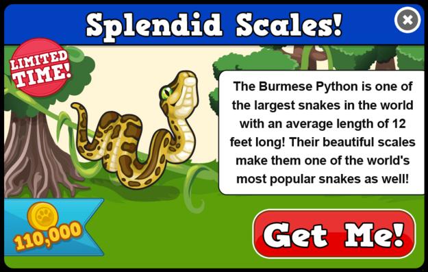 Burmese python modal