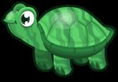 Jade turtle single