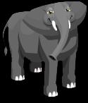 African elephant static