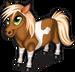 Miniature horse single