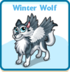 Winter wolf card