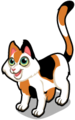 Calico cat single